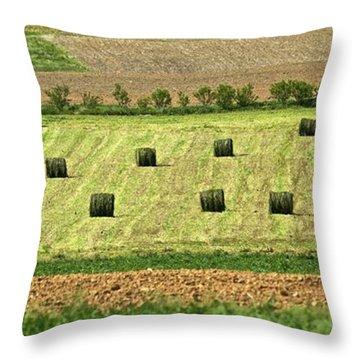 Green Hay Bales Throw Pillow