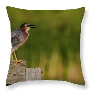 Green Heron Evening Throw Pillow