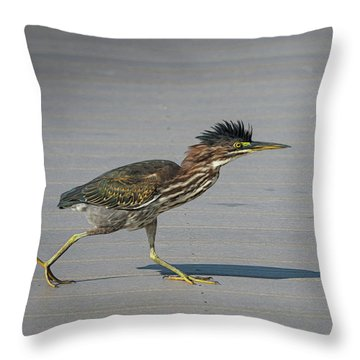 Green Heron On A Mission Throw Pillow