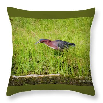 Green Heron On The Hunt Throw Pillow by Ricky L Jones