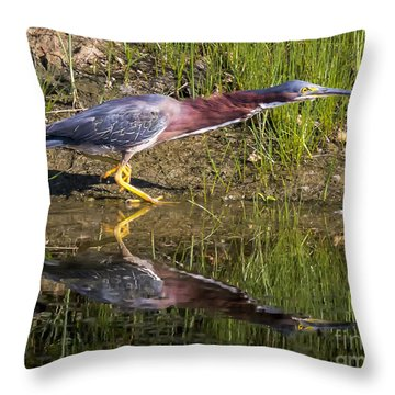Throw Pillow featuring the photograph Green Heron  by Ricky L Jones