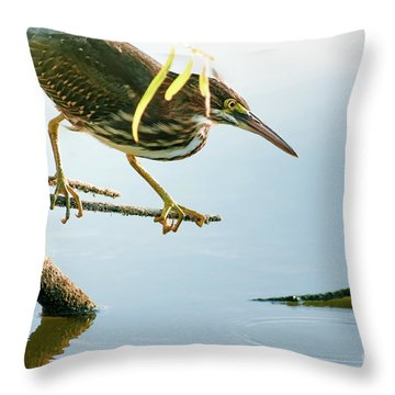 Green Heron Sees Minnow Throw Pillow by Robert Frederick