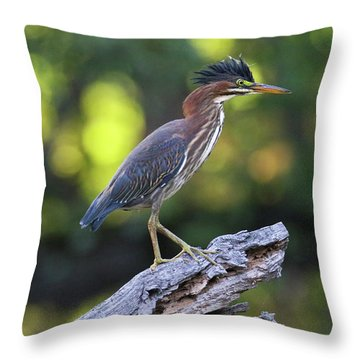 Green Heron Stump Throw Pillow