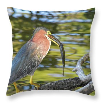 Green Heron With Fish Throw Pillow