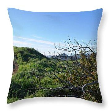 Throw Pillow featuring the photograph Green Hills And Bushes Landscape by Matt Harang