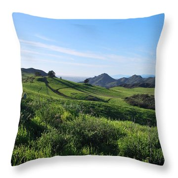 Throw Pillow featuring the photograph Green Hills Landscape With Cactus by Matt Harang