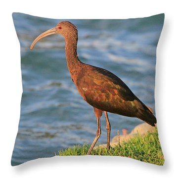 Green Ibis 4 Throw Pillow