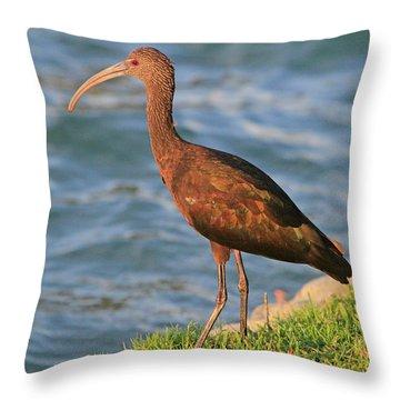 Green Ibis 4 Throw Pillow