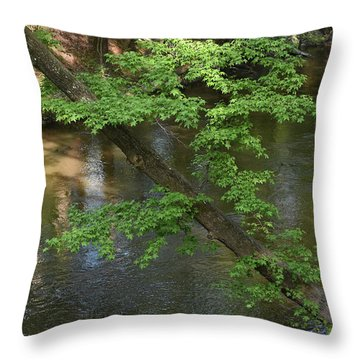 Throw Pillow featuring the photograph Green Is For Spring by Skip Willits