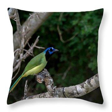 Green Jay Throw Pillow