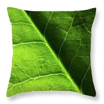 Throw Pillow featuring the photograph Green Leaf Veins by Ana V Ramirez