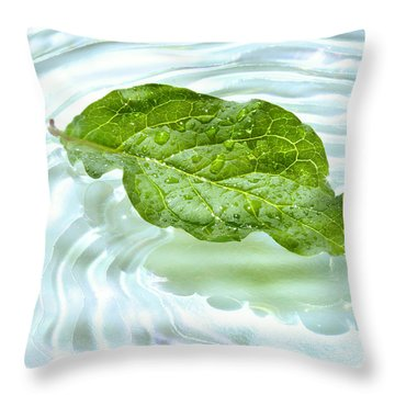 Green Leaf With Water Reflection Throw Pillow by Sandra Cunningham