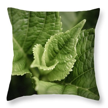 Throw Pillow featuring the photograph Green Leaves Abstract II by Marco Oliveira