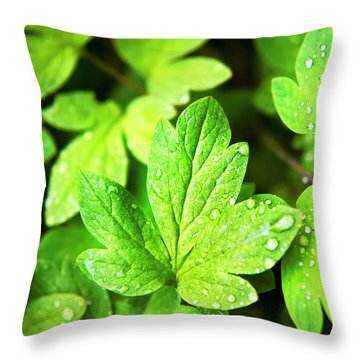 Throw Pillow featuring the photograph Green Leaves by Christina Rollo