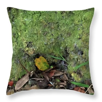 Green Man Spirit Photo Throw Pillow