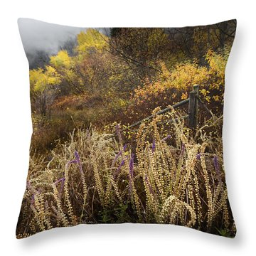 Green Mountain Dawn Throw Pillow by John Poon