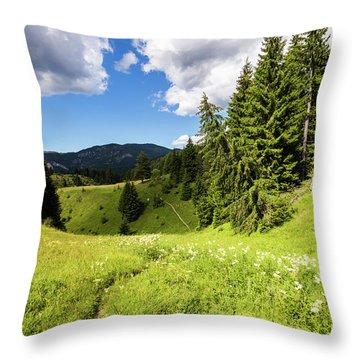 Green Mountain Throw Pillow by Evgeni Dinev