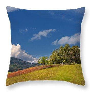Throw Pillow featuring the photograph Green Mountain Pasture by Ken Barrett