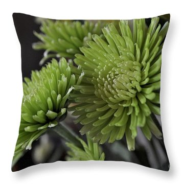 Green Mums Throw Pillow