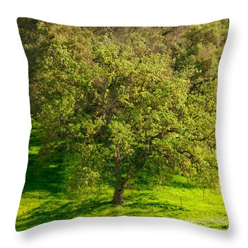 Green Oak Tree And Grasses Throw Pillow