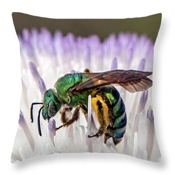 Green Orchid Bee Throw Pillow