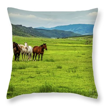 Green Pastures Throw Pillow by Jon Burch Photography