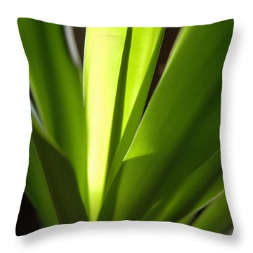 Green Patterns Throw Pillow by Jerry McElroy