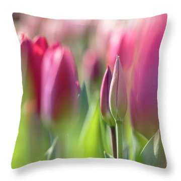 Green Pink Wall Art - Spring Tulips Keukenhof Flower Garden Photography Art Print Throw Pillow