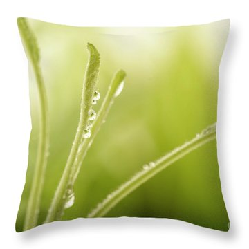 Green Plant With Water Drops Throw Pillow