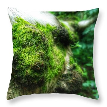 Green Promise Throw Pillow