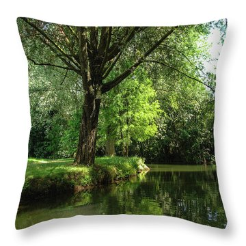 Throw Pillow featuring the photograph Green Reflections by Cristina Stefan