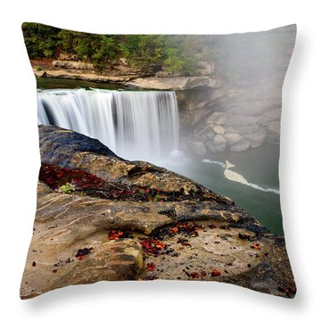 Green River Falls Throw Pillow