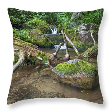 Green Rock Pool Throw Pillow by Alan Raasch