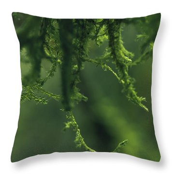 Flavorofthemonth Throw Pillow