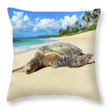 Green Sea Turtle Hawaii Throw Pillow