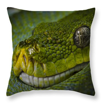 Green Snake Throw Pillow