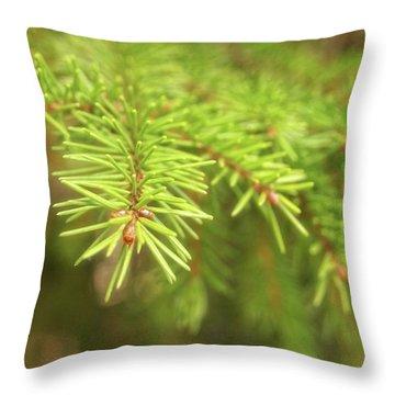 Green Spruce Branch Throw Pillow by Anton Kalinichev