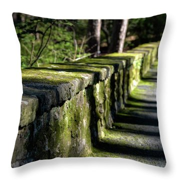 Throw Pillow featuring the photograph Green Stone Wall by James Barber
