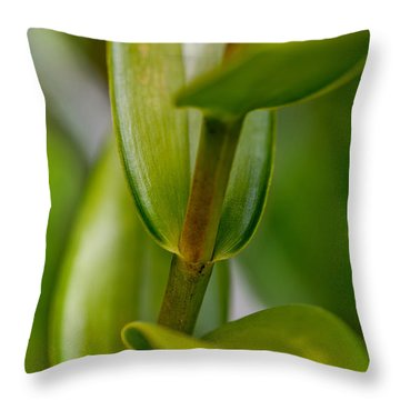 Green Stork Throw Pillow