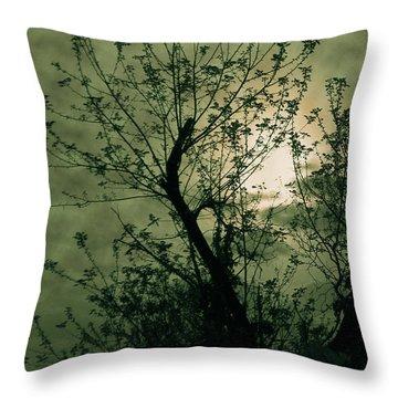 Green Sunset Throw Pillow