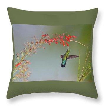 Green-throated Carib Throw Pillow