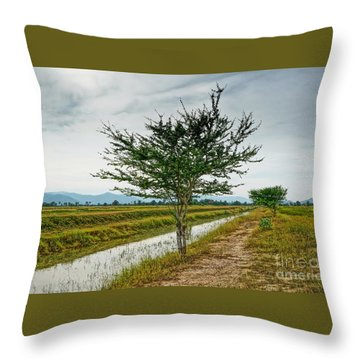 Throw Pillow featuring the photograph Green Tree by Arik S Mintorogo