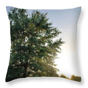 Green Tree Bright Sunshine Background Throw Pillow