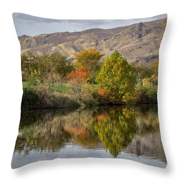 Green Tree Pond Reflection Throw Pillow