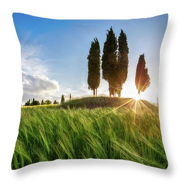 Green Tuscany Throw Pillow by Evgeni Dinev