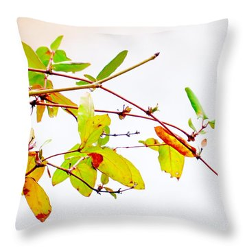 Green Twigs And Leaves Throw Pillow by Craig Walters
