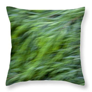 Green Waterfall 2 Throw Pillow
