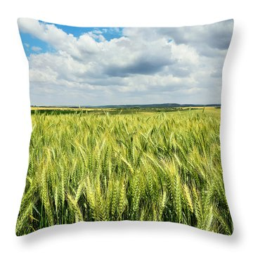 Green Wheat Field With Blue Sky Throw Pillow