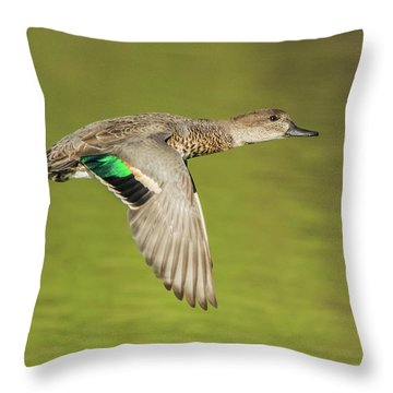 Green-winged Teal 6320-100217-2cr Throw Pillow