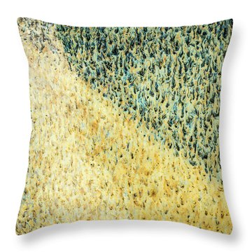 Throw Pillow featuring the photograph Green/yellow Abstract Two by David Waldrop